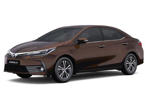 Toyota Corolla AltisPhantom Brown Color